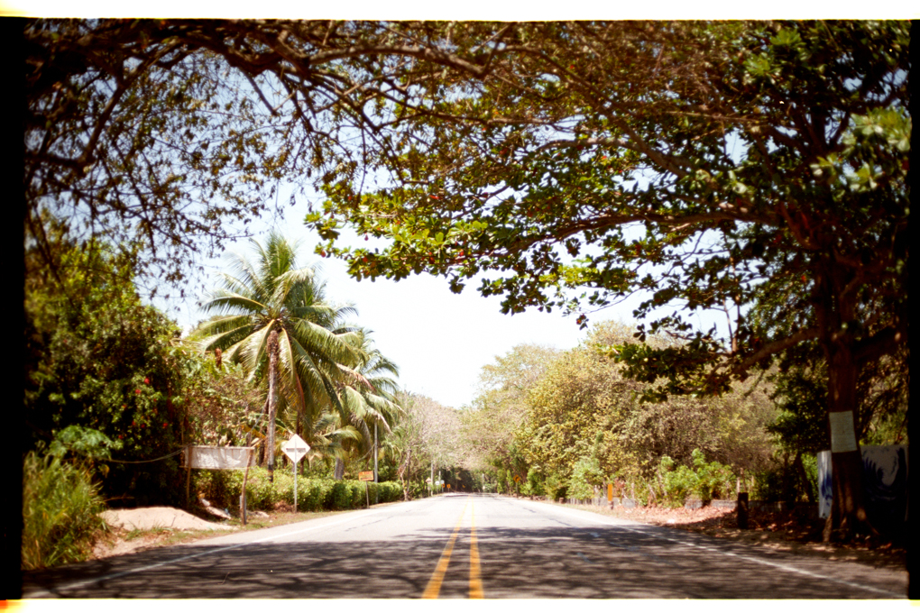 Jungle Casa Grande